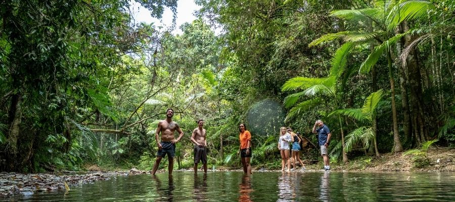 People standing in water in the Daintree Rainforest