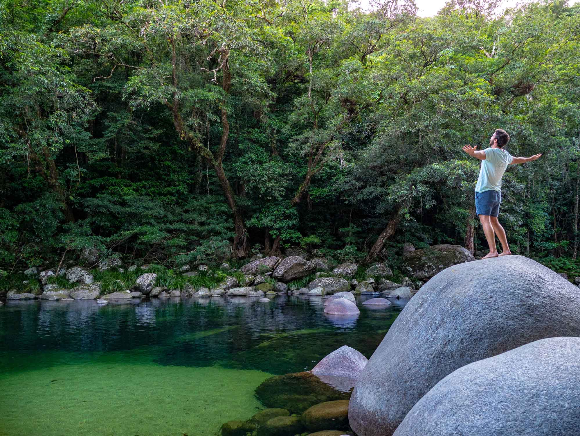 Daintree Tours Charters