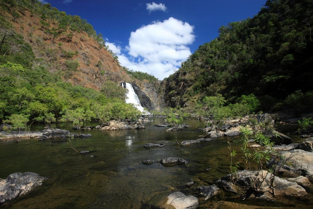 Outback bloomfield falls daintree tours charters