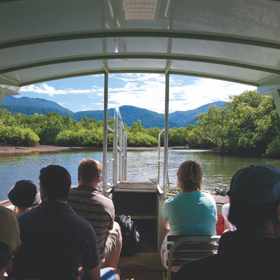 river cruise daintree tours